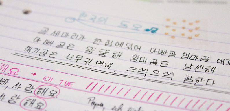 Macht es Sinn, Koreanisch neben einer zweiten Sprache zu lernen?