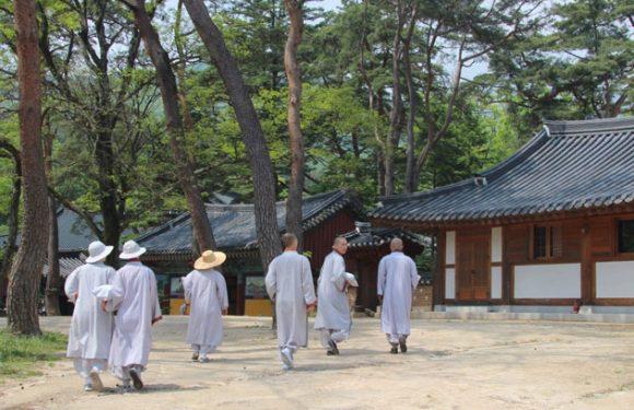 Templestay: Religion direkt miterleben