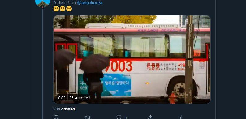 Was hat es eigentlich mit den Twitter-Fancams auf sich?