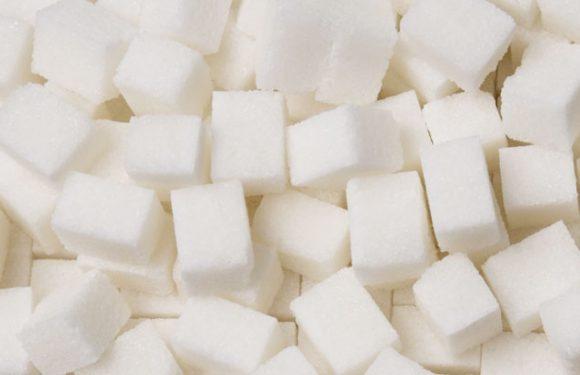 Zucker, Oligotang & Co. – die Süßungsmittel in der koreanischen Küche