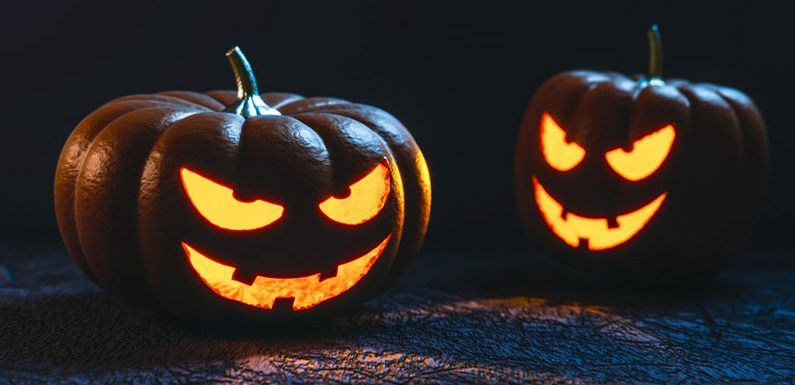 Halloween-Special 2020: Ihr könnt aktiv mitentscheiden!