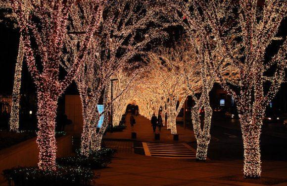 Weihnachten in Korea – an Romantik kaum zu überbieten