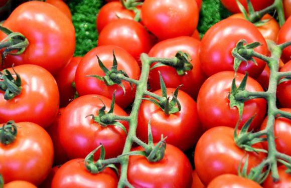 So wichtig ist die Tomate in der koreanischen Küche